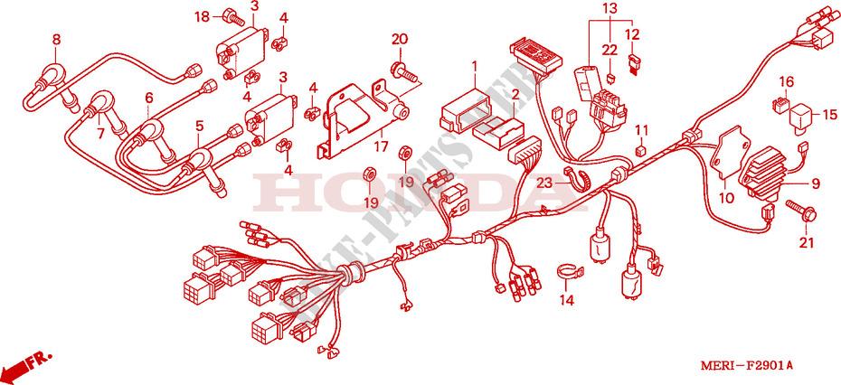 KABELBAUM(CBF600N/NA) für Honda CBF 600 25KW special ... on